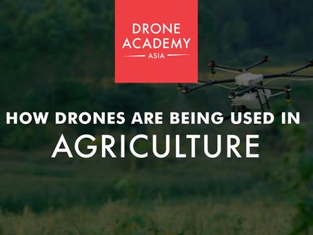 Bagaimanakah Drons Digunakan Dalam Pertanian?