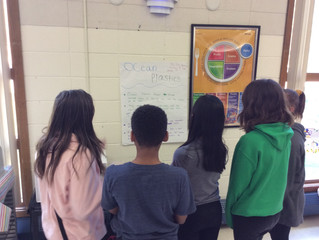 6th Grade Earth Day Gallery Walk