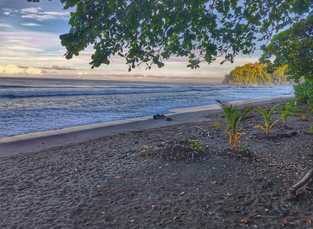 Costa Rica: There is no place like the beach! ❤️