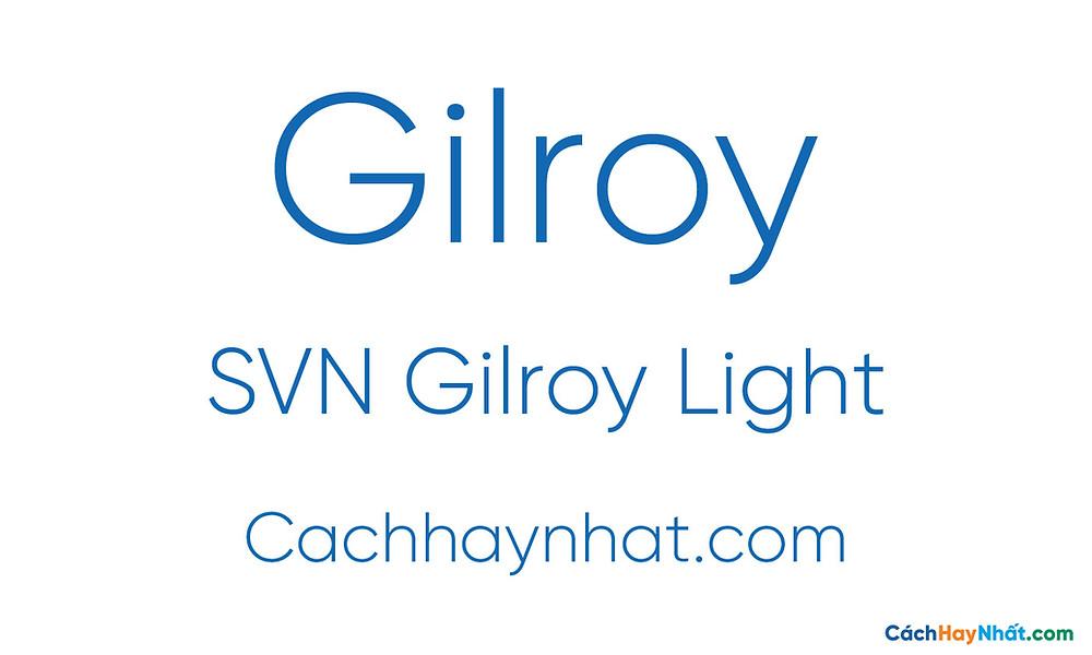 SVN Gilroy Light