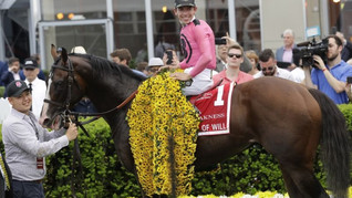 2020 Preakness Stakes Contenders