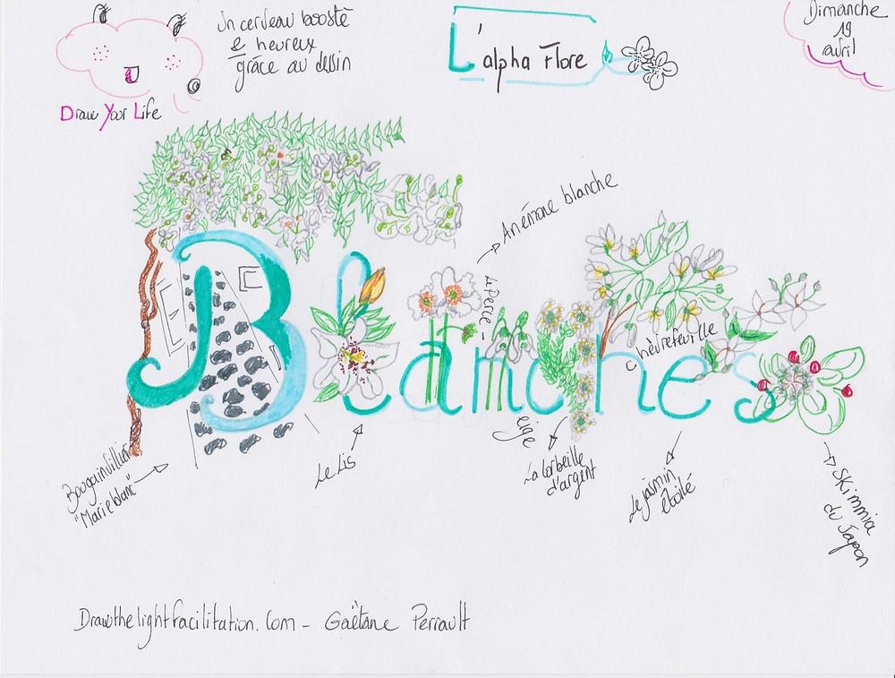 Alpha flore- Drawthelight Facilitation - Gaëtane Perrault