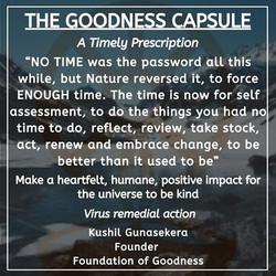 GOODNESS CAPSULE 3