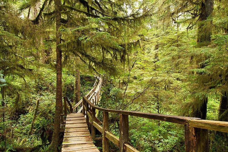 Amazing hiking trip in western Canada viewpoint on bridge road trip tour Out Here Travel Canada