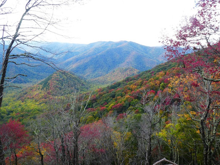 Wanderwochenende im Smoky Mountains National Park