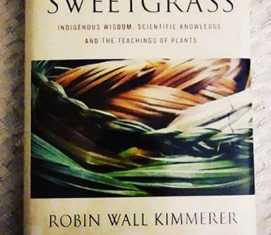"""Braiding Sweetgrass: Indigenous Wisdom, Scientific Knowledge & the Teachings of Plants"""