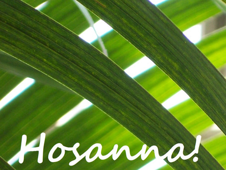 For Palm Sunday