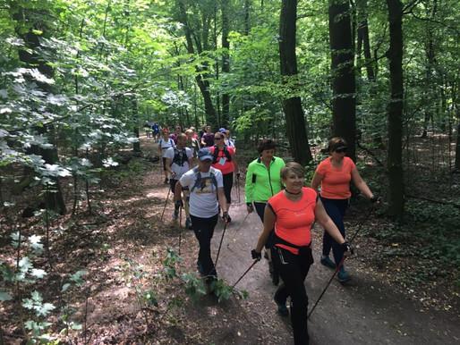 Relacja z Letniego Rajdu Nordic Walking - 4 Pory Roku - lato w Lesie Osobowickim