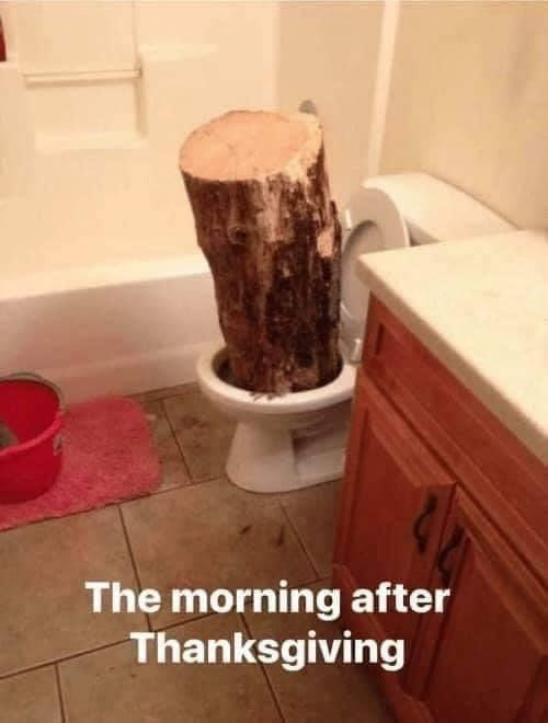 The Morning After Thanksgiving. Log in toilet