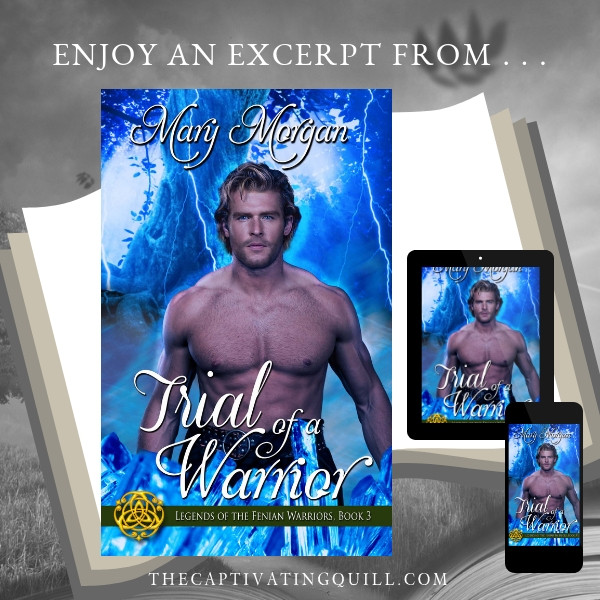 Excerpt from TRIAL OF A WARRIOR by Mary Morgan