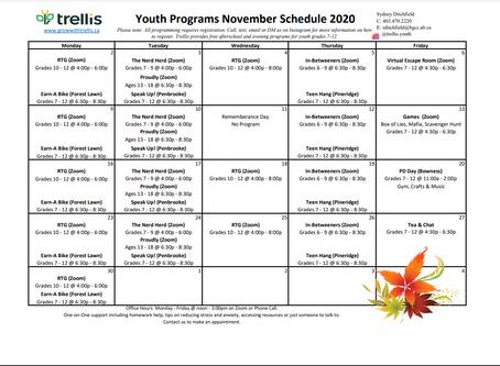 Trellis Youth Program for November