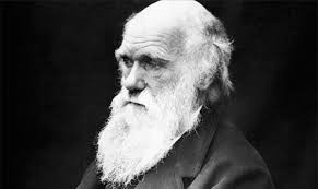 The Meaning Of Darwin Day