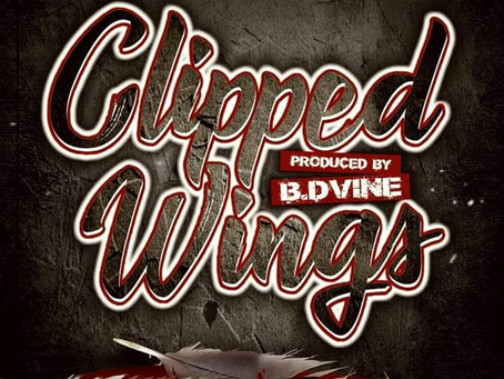 "B Dvine x D Rage ""Clipped Wings"" Video"