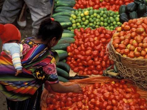 Acerca da escassez de alimentos