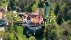 Schloss Wald in Niederösterreich