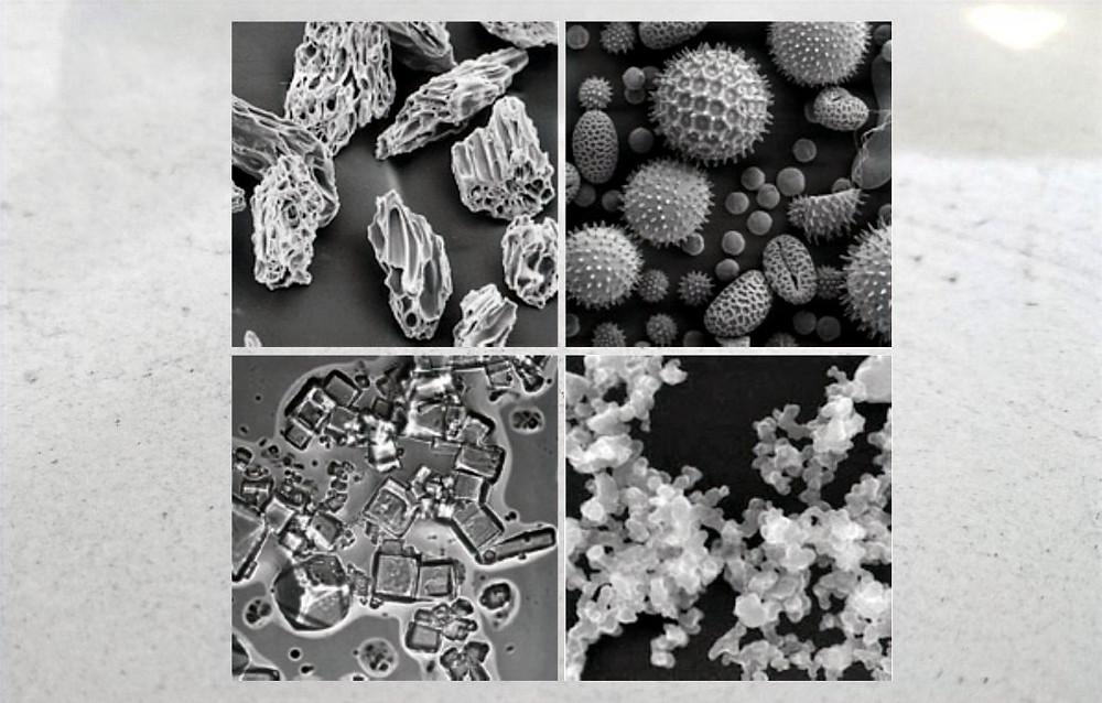 Volcanich ash, pollen, salt and soot under microscope