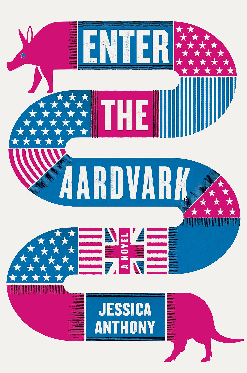 Enter the Aardvark by Jessica Anthony