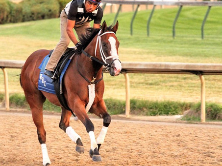 Covfefe Looks Sharp for the Breeders' Cup Filly & Mare Sprint
