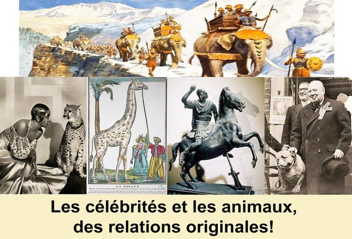 Les célébrités et les animaux, des relations originales!