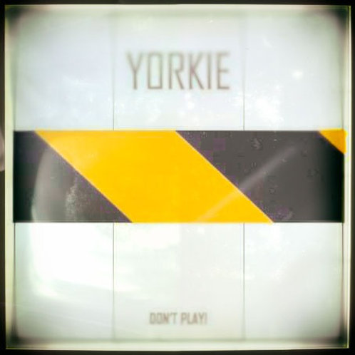 YORKIE : Don't Play!