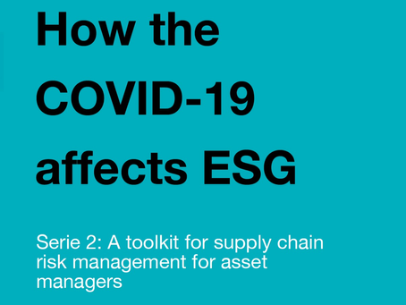 Serie 2: How the COVID-19 affects ESG: a toolkit for supply chain risk management for asset managers