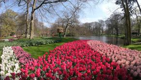 O que fazer em Amsterdam #2