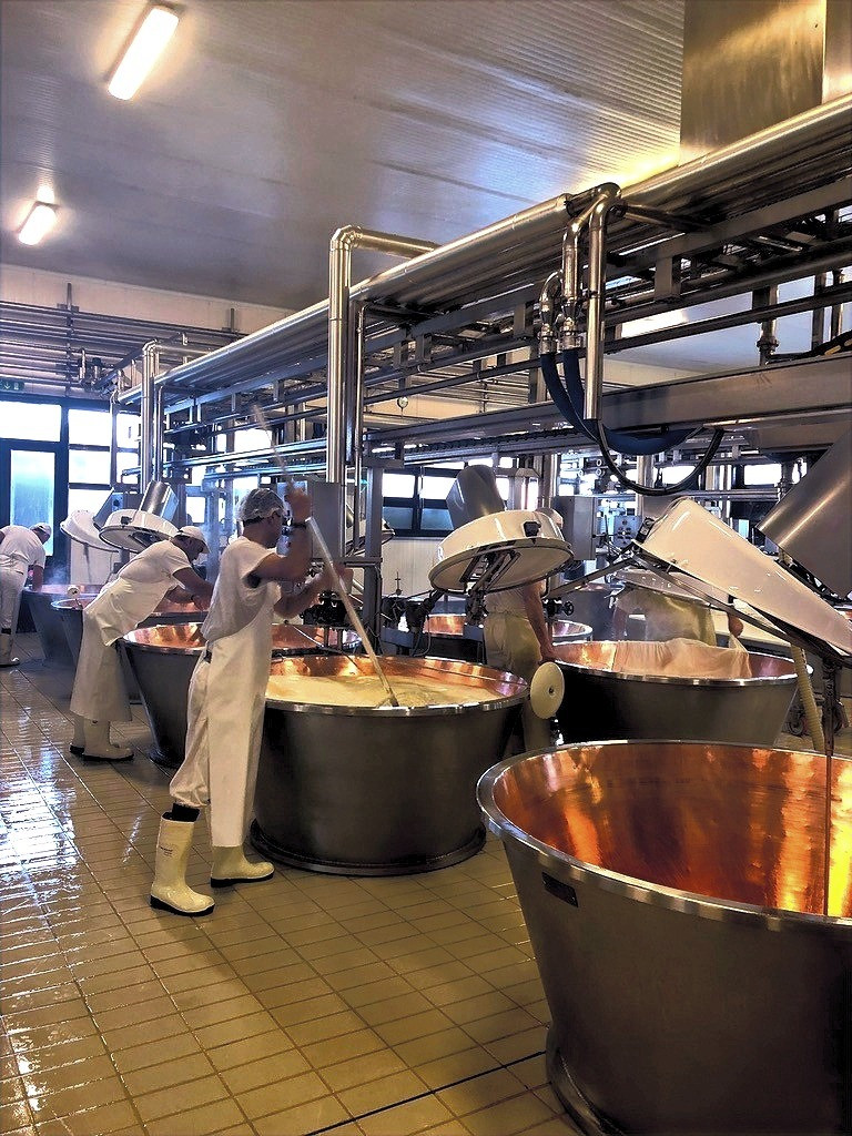 Parmigiano Reggiano production: our visit to a local diary