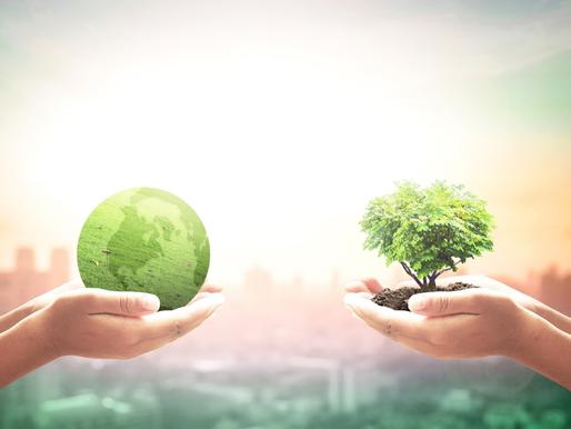 L'entreprise peut-elle rattraper les lacunes d'éco-citoyenneté des générations X, Y et Z ?
