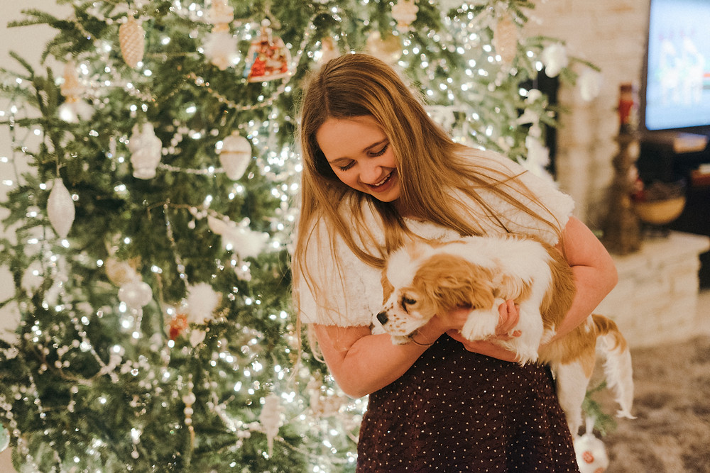 Guest holding puppy in front of a Christmas tree