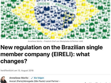 Die Einpersonengesellschaft in Brasilien