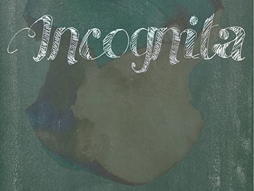 Incognita short film review