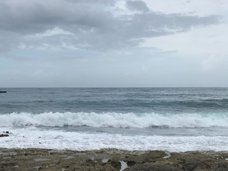 An Ocean of Love... and Fear.
