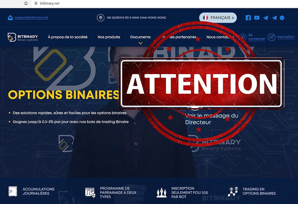 BitBinary AVIS