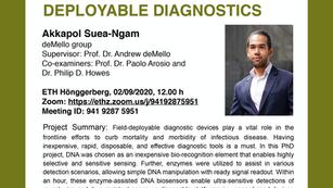 PhD public presentation by Akkapol Suea-Ngam