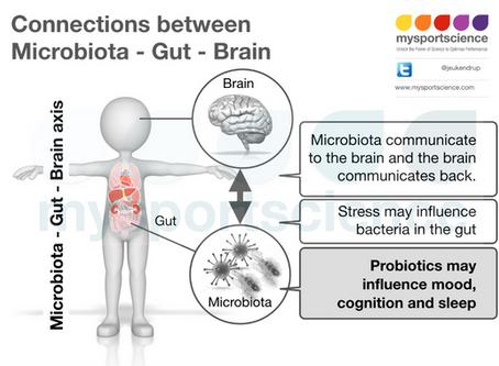 A gut feeling about probiotics