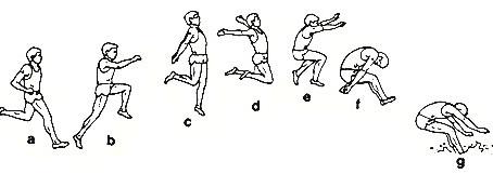 Resumen de principios técnicos básicos del salto de longitud