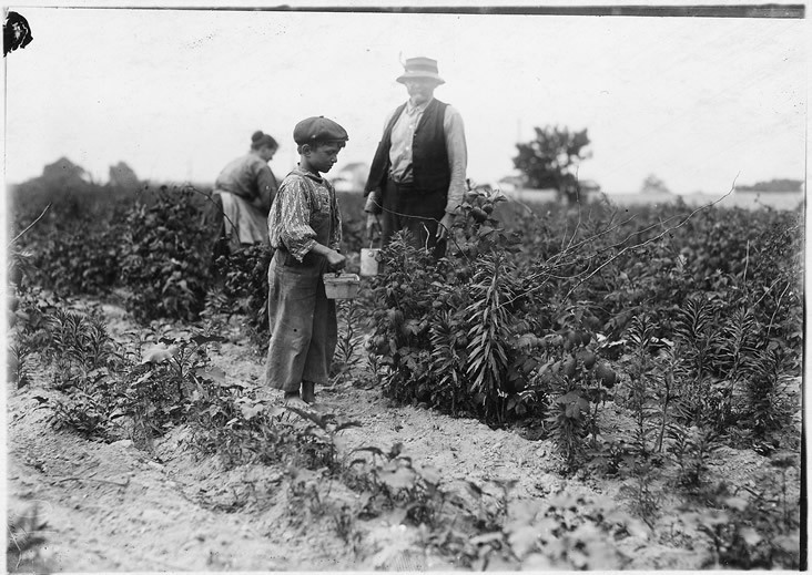 Old Photo of Farmers