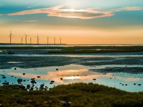 Schone energie net zo destructief als fossiele