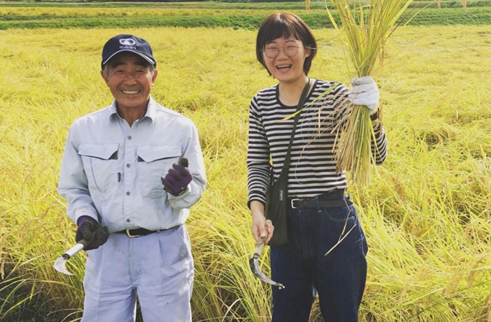 稲刈り体験プログラム