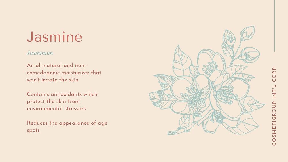 Skincare benefits of jasmine
