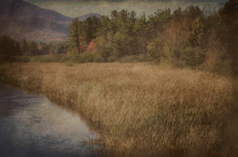 Wanted to give this upstate NY fall scene the feeling of an old Dutch master painting