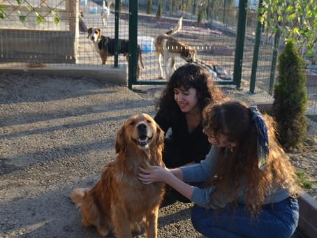 TDP Minik Dostlarını Ziyarete Gitti | Organizasyon Alt Grubu