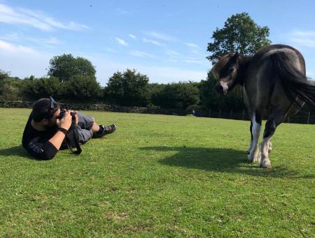 Devon Horse & Pony Sanctuary