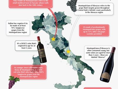 vino nobile vs montepulciano d'abruzzo!