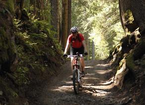 Active E-Bike experience - Indimenticabile esperienza nella natura delle Dolomiti con Guida.