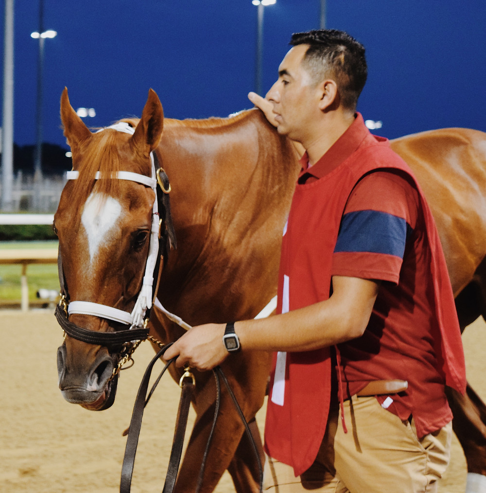 Groom and horse at Churchill Downs. Reasons to attend live horse racing.