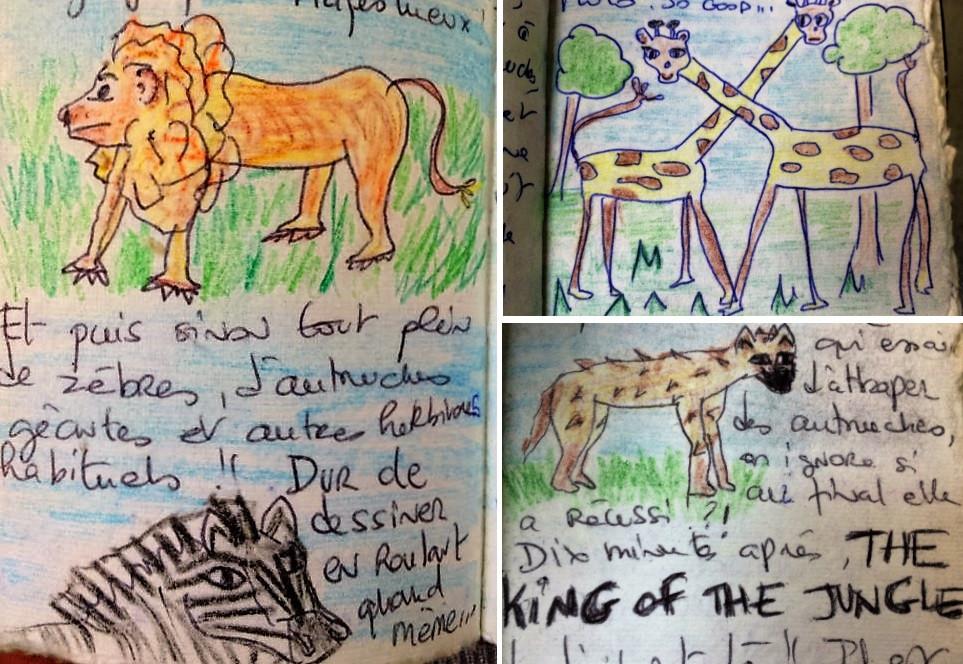 Carnet de voyage Afrique Safari animaux