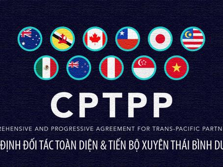 Một năm thực thi CPTPP: Tăng trưởng xuất khẩu VN không như kỳ vọng