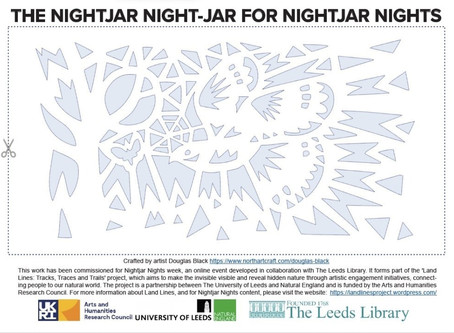 Free Nightjar Lantern project by Douglas Black