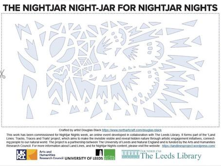 Free Nightjar Lantern project by Douglas Black